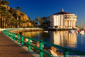 Avalon, Catalina Island, California.